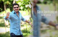 Saro Tovmasyan – Srtis Anun